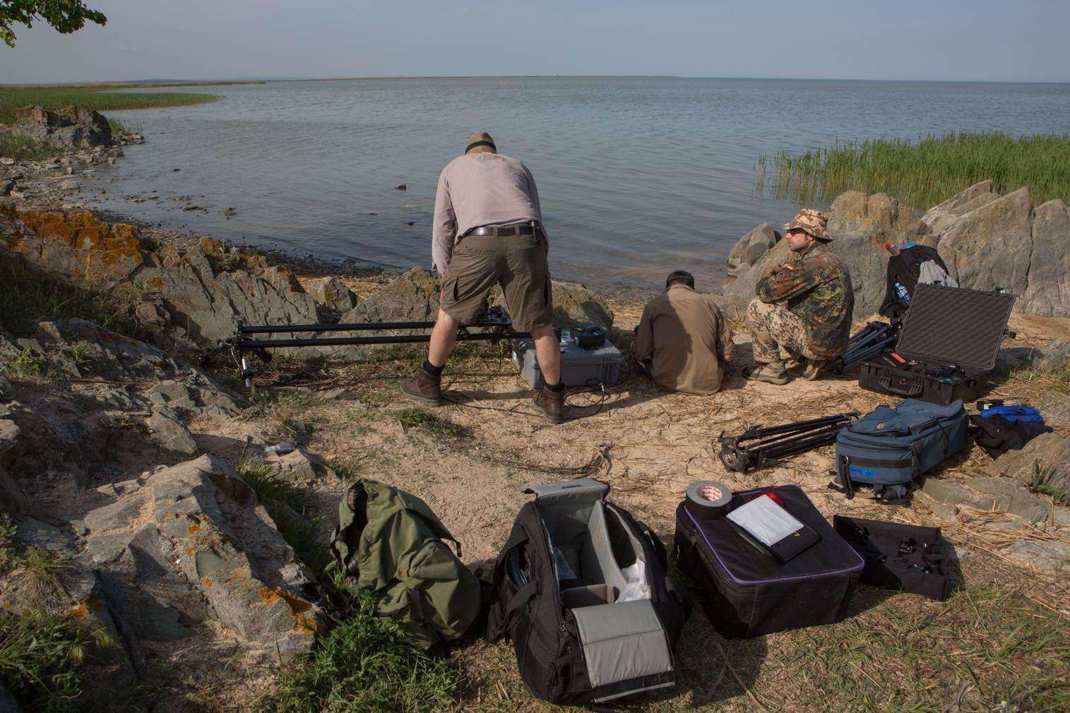 Echipa in delta