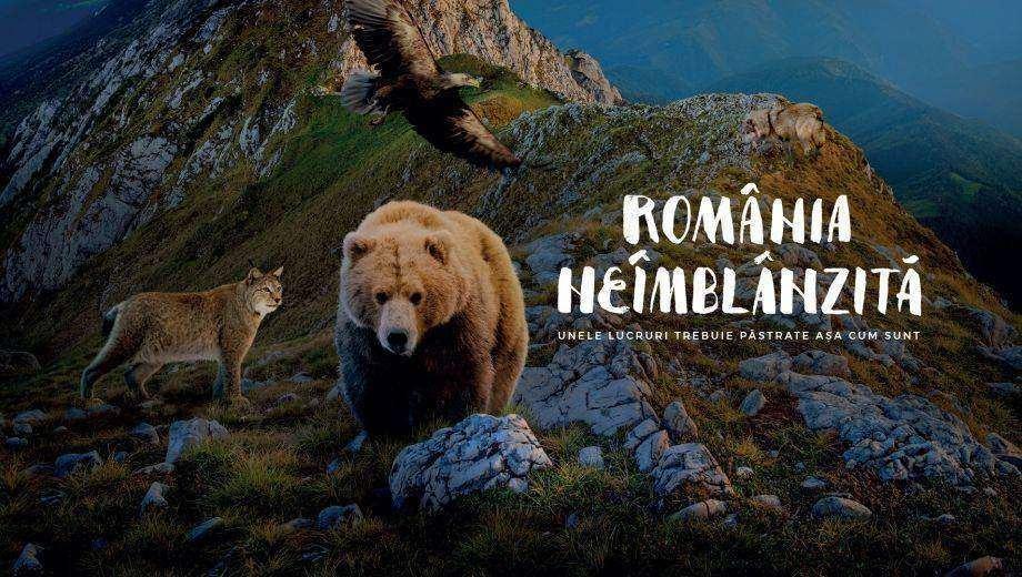 Image result for Romania neimblanzita